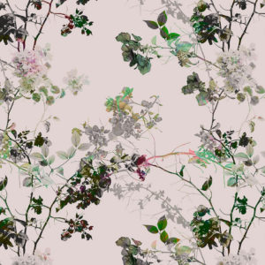 branches II, love blossom, IPHEPHA - Das perfekte Wandkleid, Tapeten Online-Shop