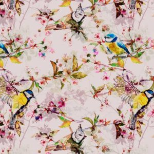 songbirds II, wild thoughts, IPHEPHA - Das perfekte Wandkleid, Tapeten Online-Shop