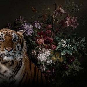 wild life I, wild thoughts, IPHEPHA - Das perfekte Wandkleid, Tapeten Online-Shop
